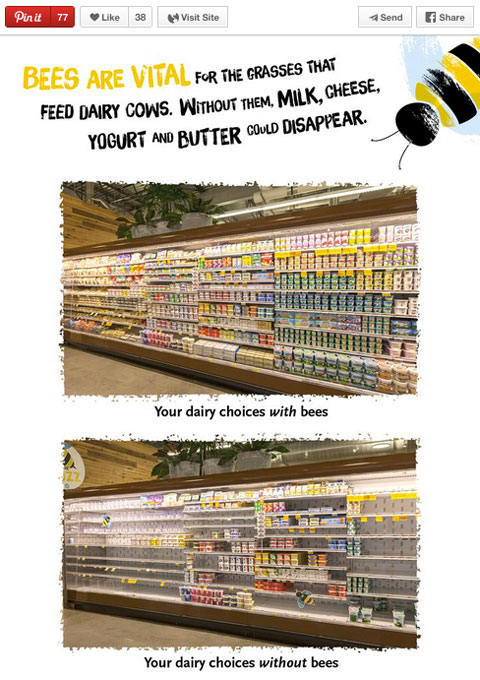 whole foods market comparison educational pin