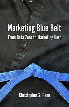 marketing blue belt book cover