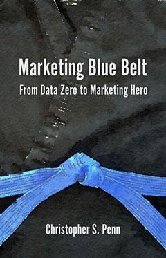 marketing blue belt book cover