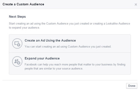 choose a custom audience