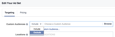 custom audience include exclude menu in targeting