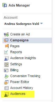 audiences in ads manager