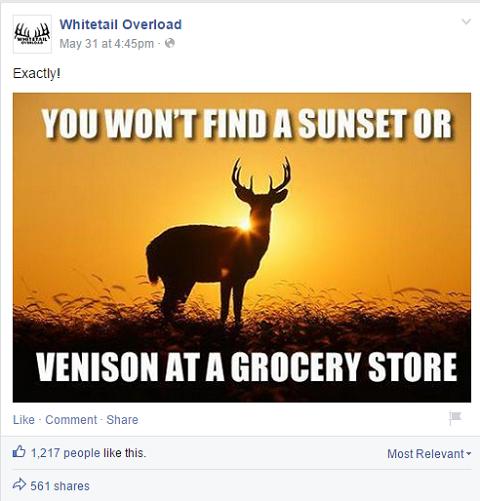 Whitetail Overload Meme