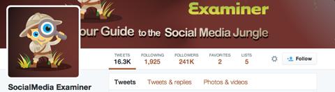 follows twitter profile