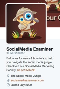 website link in twitter profile