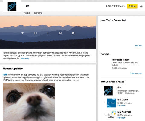ibm linkedin showcase page