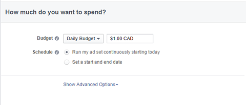 budget options for facebook ads