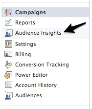 audience insights in campaign menu