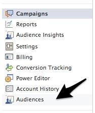 audiences in ad campaign menu