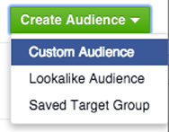 custom audience in create audience menu