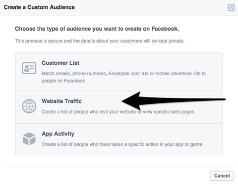 select website custom audience
