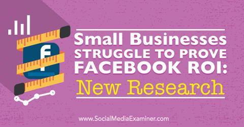facebook roi research