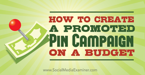promoted pins on a budget