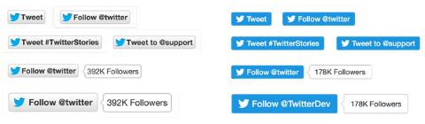 twitter tweet and follow button