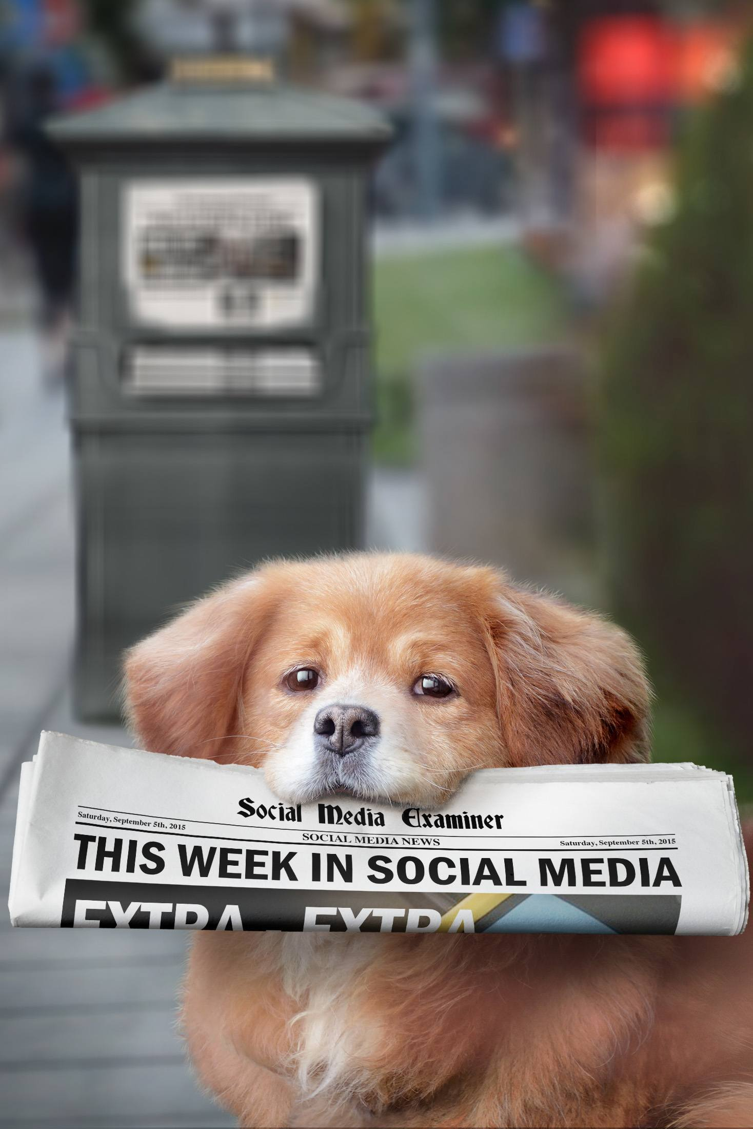 social media examiner weekly news september 5 2015