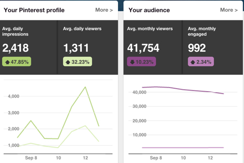pinterest profile and audience data