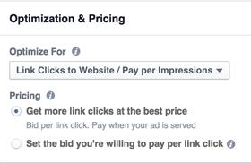 instagram ad bidding options