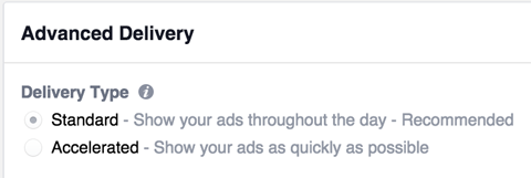 instagram advance ad delivery options