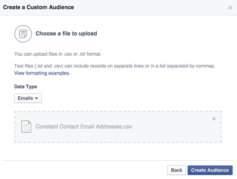 power editor custom audiences email list upload