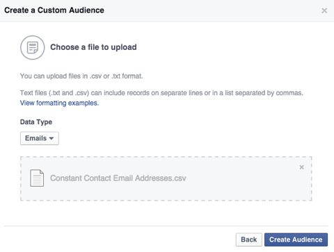 power editor custom audiences email list upload