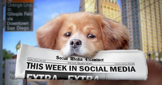 Periscope Broadcasts Natively in Twitter: This Week in Social Media