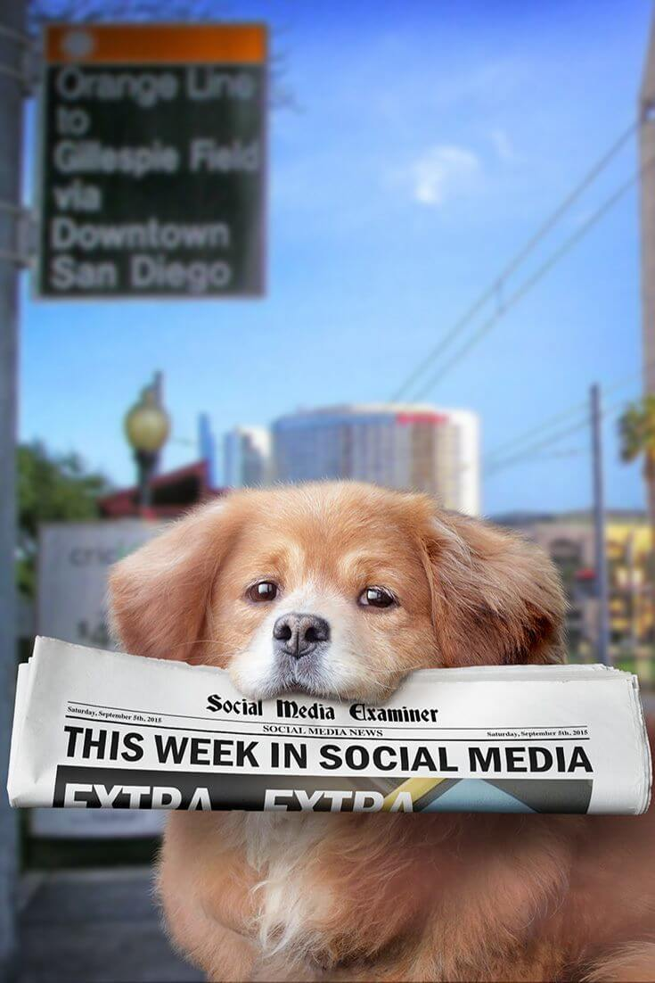 social media examiner weekly january 16 2016