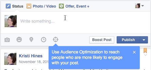 facebook audience optimization for posts update box
