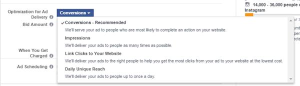 web conversion option