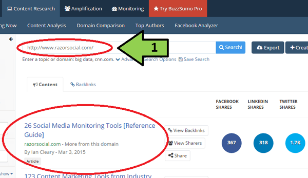 buzzsumo content search example