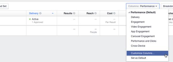 facebook insights canvas columns