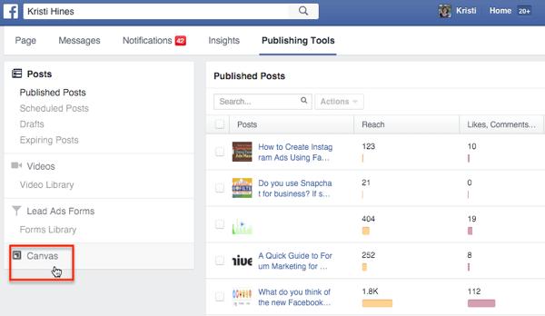facebook canvas access