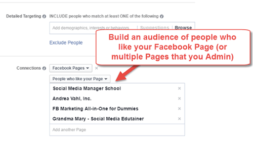 build saved audience from facebook page connections