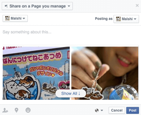 share facebook posts to page