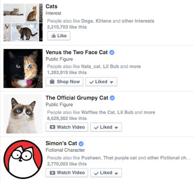 facebook verified page in search