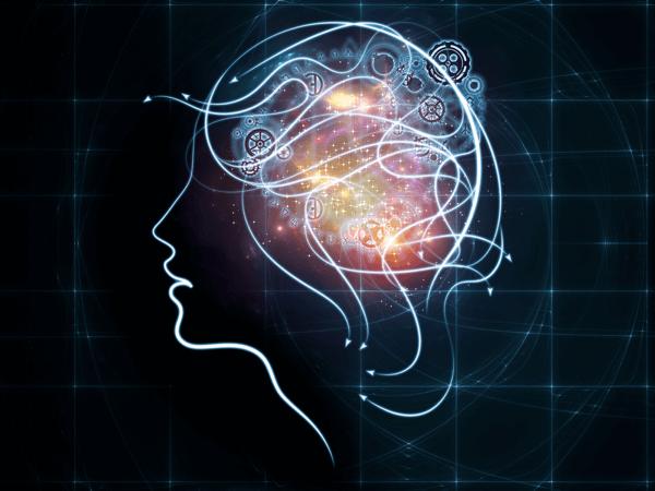 brain function image shutterstock 318232451