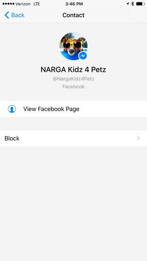 view facebook page profile in messenger app