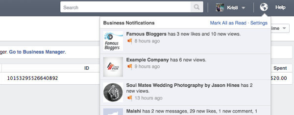 facebook ads manager notifications