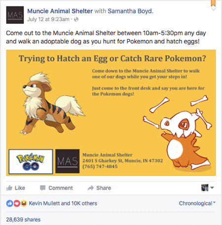 pokemon go muncie animal shelter