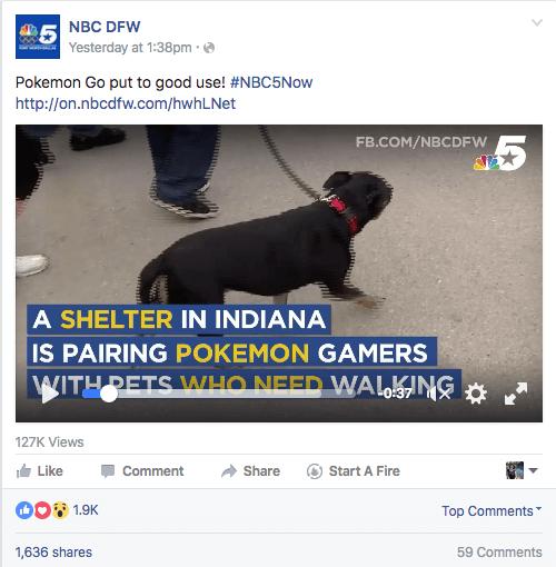 pokemon go muncie animal shelter