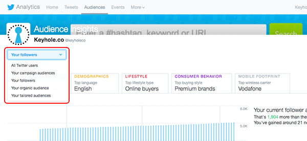 twitter ad audience insights