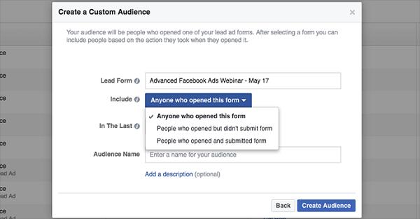 custom audience lead ad