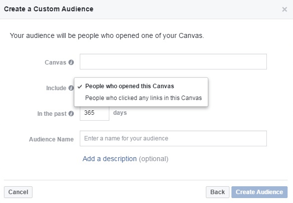 custom audience from canvas opens