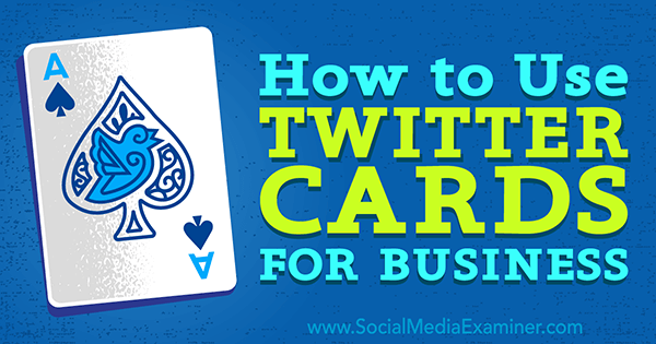 implement twitter cards for my business