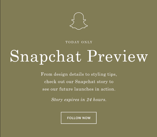 everlane email about snapchat story
