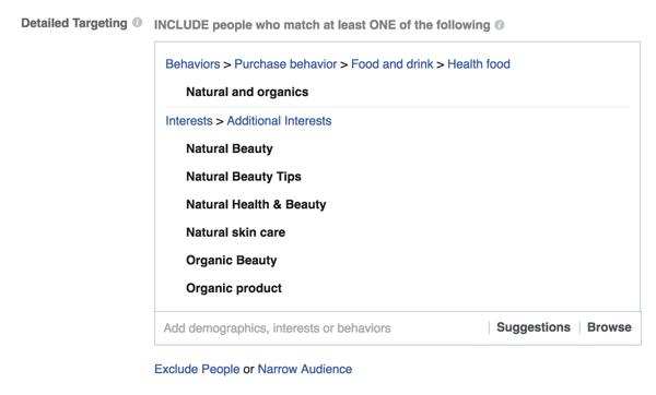 Beispiel für detaillierte Targeting-Optionen für Facebook-Anzeigen