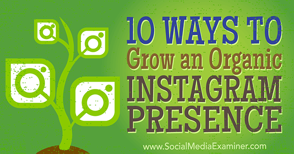 organic marketing tips to increase instagram followers
