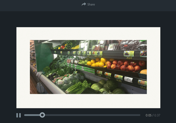 adobe spark preview video