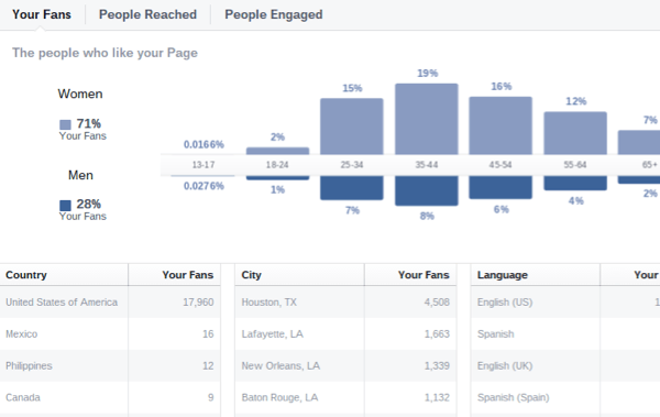 facebook insights audience demographics