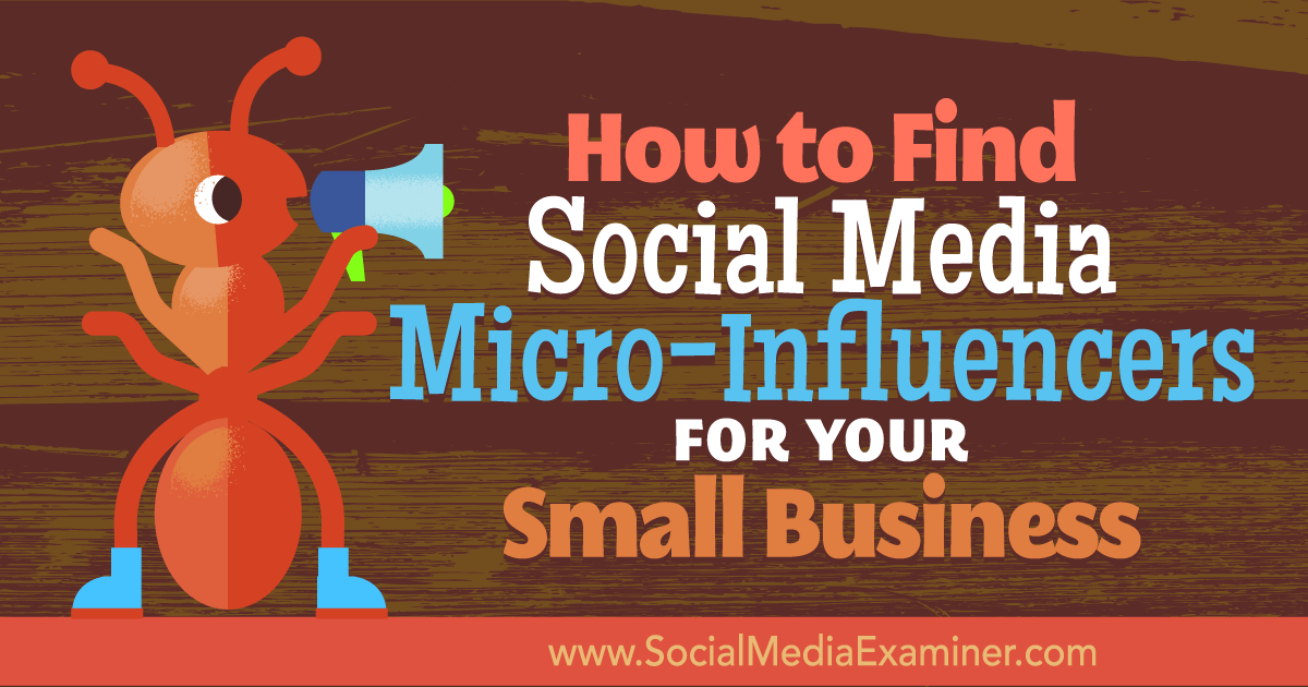 budget celebrity insrammer work with micro influencers