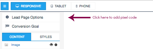 If you're using Leadpages, click Lead Page Options.